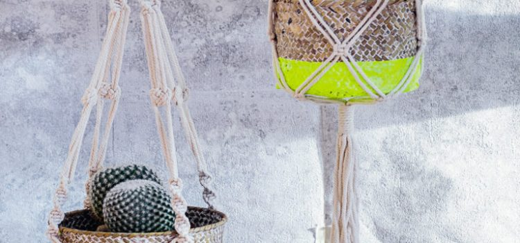 Marabu Basteltipp: Pflanzenkörbe in Neonlook
