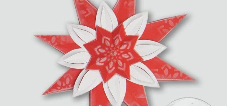 Mein DEKO- und Bastelspaß Winter 2020, Weihnachtssterne, roter Blütenstern